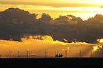 Liverpool: Windfarm Sunset