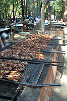 Chickens cook on the barbeque grill at the Annual Occidental Volunteer Firefighters Barbeque and community party.  This is one of the major fundraising events for the Occidental Volunteer Fire Department.