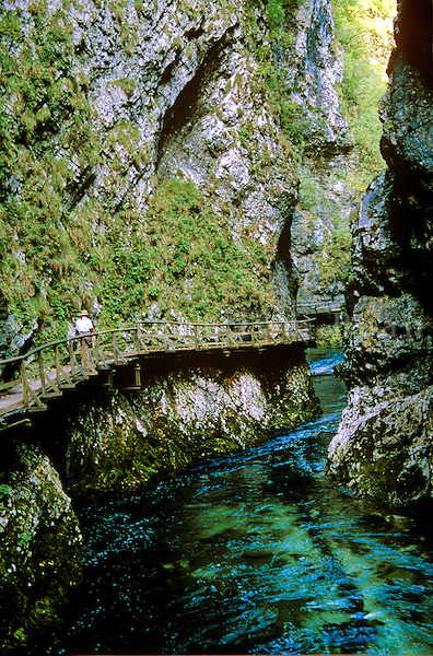 Hiker on wooden walkway in the Vintgar Gorge on the Radovna River, near Lake Bled, Slovenia, AGPix_0561.