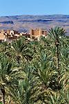 Morocco, Souss-Massa-Draa, Nekob: View over oasis palm grove with Kasbah in distance | Marokko, Souss-Massa-Draa, Nekob: Palmenhain Oase mit Kasbah im Hintergrund