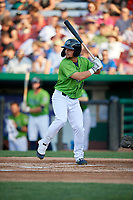 Kane County Cougars Dominic Fletcher (17) during a Midwest League game against the Dayton Dragons on July 20, 2019 at Northwestern Medicine Field in Geneva, Illinois.  Dayton defeated Kane County 1-0.  (Mike Janes/Four Seam Images)