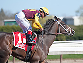 Broadway's Alibi and Javier Castellano were impressive winners of the Comely Stakes for fillies and mares.