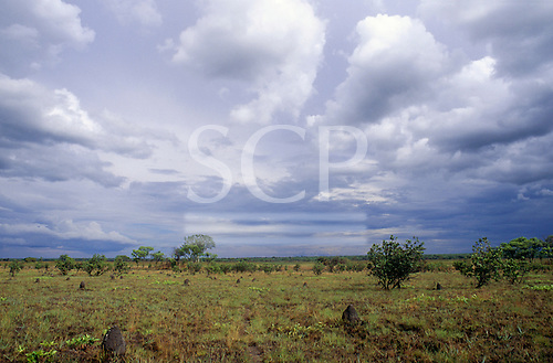 Lulimala, Zambia. Open savannah with shrubby trees and termite hills.