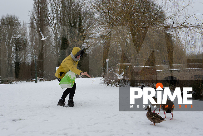 The wild life still get fed following snowfall at Foots Cray Meadow, Sidcup, Kent, England on the 9 February 2021. Photo by Alan Stanford.