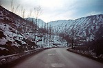 A road in Kashmir valley. India