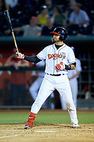 Norberto Obeso (9) of the Lansing Lugnuts at bat against the South Bend Cubs at Cooley Law School Stadium on June 15, 2018 in Lansing, Michigan. The Lugnuts defeated the Cubs 6-4.  (Brian Westerholt/Four Seam Images)