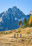 Austria, East-Tyrol, High Tauern National Park, hikers at Staller Sattel passroad connecting Valley Defereggen with Valle d'Anterselva | Oesterreich, Osttirol, Nationalpark Hohe Tauern, Wanderer am Staller Sattel, die Passstrasse verbindes das Defereggental mit dem Antholzertal in Suedtirol