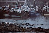 Europe/France/Bretagne/56/Morbihan/Quiberon: Port-Maria