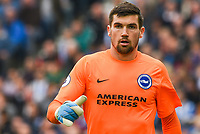 Mathew Ryan Goalkeeper of Brighton & Hove Albion (1) during the Premier League match between Brighton and Hove Albion and Everton at the American Express Community Stadium, Brighton and Hove, England on 15 October 2017. Photo by Edward Thomas / PRiME Media Images.