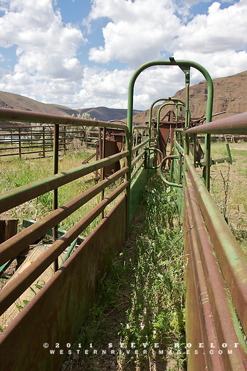 Cattle chute near the mouth of Esau Canyon on the John Day River, Oregon.