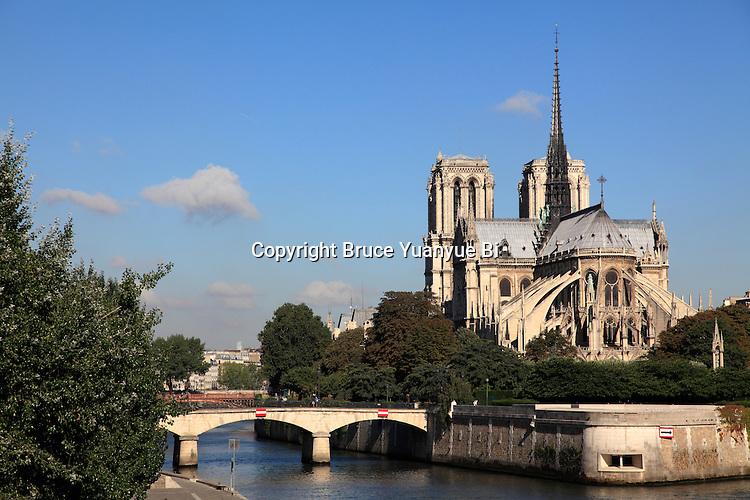 View of Notre Dame Notre-Dame cathedral and Île de la Cité from Left Bank of River Seine. city of Paris. Paris. France