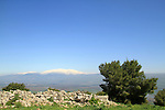 Keren Naftali in the Upper Galilee