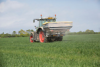 Applying nitrogen to Winter Wheat - Lincolnshire, April