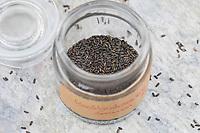 Gewöhnliche Knoblauchsrauke, Samen, Saat, Schote, Frucht, Früchte, Knoblauchrauke, Knoblauch-Rauke, Knoblauchs-Rauke, Lauchkraut, Alliaria petiolata, Hedge Garlic, Jack-by-the-Hedge, seed, seeds, pod, seed pouch, Alliaire