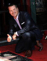Chris O'Donnell Star