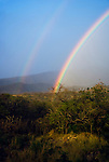 A double rainbow arches up from the trees across the mountains of Hawaii.