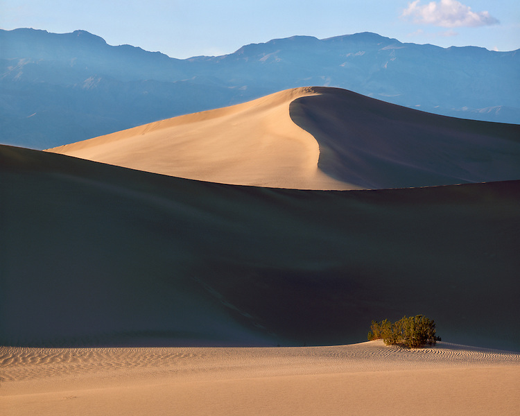 Sunset light on the sand dunes in Death Valley National Park ,CA
