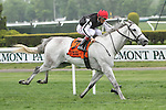 May 9 2015: Discreet Marq with John Velazquez win the 38th running of the Grade III Beaugay Stakes for fillies & mares, for 4-year olds & up, going 1 1/16 mile on the turf, at Belmont Park.  Trainer Christophe Clement. Owner Moyglare Stud Farm Ltd. Sue Kawczynski/ESW/CSM