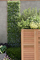 """Living wall and herb and vegetable planters, Mark Gregory's """"Children's Society Garden"""", RHS Chelsea Flower Show 2009."""