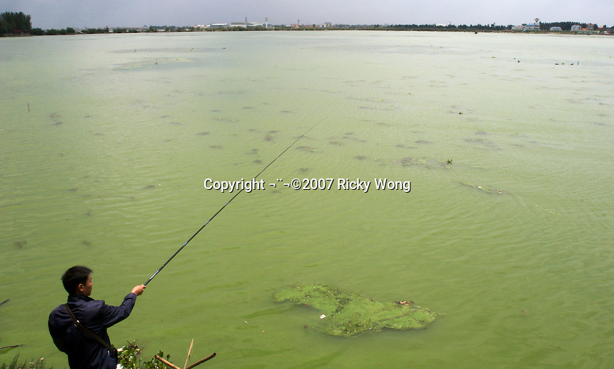 A man is fishing on the Dianchi Lake in Kunming, China. Despite hundreds of millions of dollars being spent on years of clean-up efforts, a large amount of algae has bloomed in Dianchi Lake, turning the water as green as paint in a stretch along the shore. Dianchi is China's sixth-largest freshwater lake. It has suffered from severe pollution since the early 1990s and was plagued by algal blooms each summer..26 Jun 2007