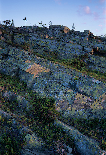 Lichen covered rocks, Pyhätunturi National Park, Finland, July 2001