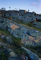 Lichen covered rocks, Pyhätunturi National Park, Finland, July 2001