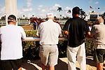 Scenes from Donn Handicap Day at Gulfstream Park. Hallandale Beach Florida. 02-09-2013