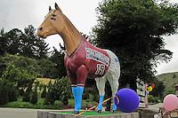 Old Paint - Lemo's Horse