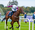 September 15, 2018 :  Laurens (FR), ridden by Daniel Tudhope, wins the Coolmore Fastnet Rock Matron Stakes on Irish Champions Stakes Day at Leopardstown Racecourse on September 15, 2018 in Dublin Ireland. Scott Serio/ESW/CSM