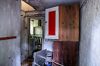 BNPS.co.uk (01202 558833)<br /> Pic: MaxWillcock/BNPS<br /> <br /> Pictured: Inside the property.<br /> <br /> An abandoned cottage that is covered by undergrowth and looks like something out of a horror film has sold for a whopping £430,000.<br /> <br /> The derelict property, called Grasshopper Cottage, had a valuation of £275,000 before it went up for sale at auction.<br /> <br /> But due to the current state of the property market where demand far outstrips supply, interest and bidding in the 150-year-old cottage took off.