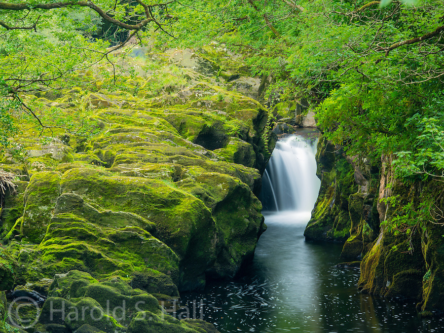 The mountains around the village of Dingle, Ireland are full of moss, streams and the occasional waterfall.  The only people along this river were fishermen and avid photographers.