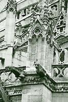 A view in monochrome of the back of the church of Notre Dame, with its characteristic gothic architecture. There is a magpie resting on a gargoyle, in the center of the picture (Paris, 2010).<br /> <br /> Una vista in monocromatico del retro di Notre Dame, con la sua caratteristica architettura gotica. C'è una gazza posata su una chimera, nel centro della foto (Parigi, 2010).