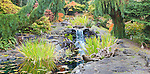 Waterfall and Moon Bridge with flagstone patio in Private Garden.  Private garden professionally landscaped. Available exclusively from www.spacesimages.com