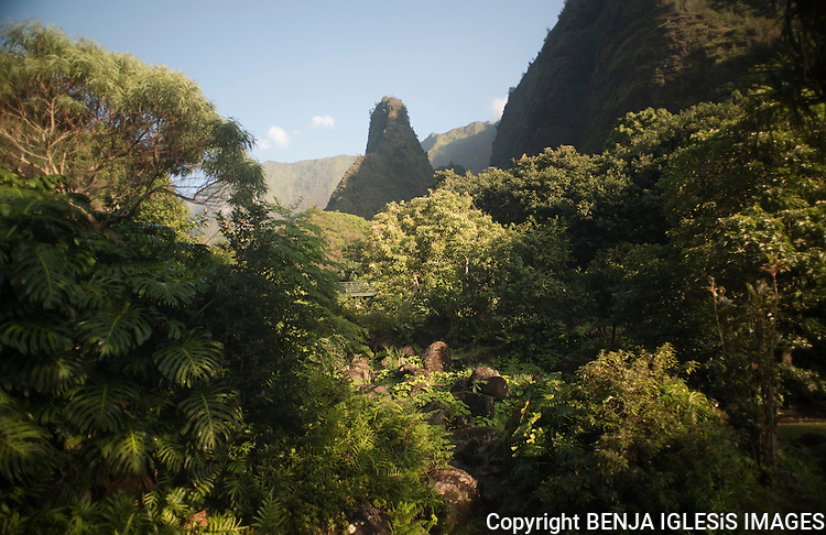 A different viem of the Iao Valley Neddle, this one of the most visited tourist atraction on Maui.