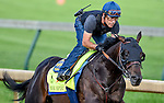 LOUISVILLE, KY - MAY 02: Mor Spirit, trained by Bob Baffert and owned by Michael Lund Petersen, exercises and prepares during morning workouts for the Kentucky Derby and Kentucky Oaks at Churchill Downs on May 2, 2016 in Louisville, Kentucky. (photo by John Voorhees/Eclipse Sportswire/Getty Images)
