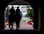 DEL MAR, CA - OCTOBER 31: Horses walk onto the track for morning workouts at Del Mar Thoroughbred Club on {mothname} 31, 2017 in Del Mar, California. (Photo by Scott Serio/Eclipse Sportswire/Breeders Cup)