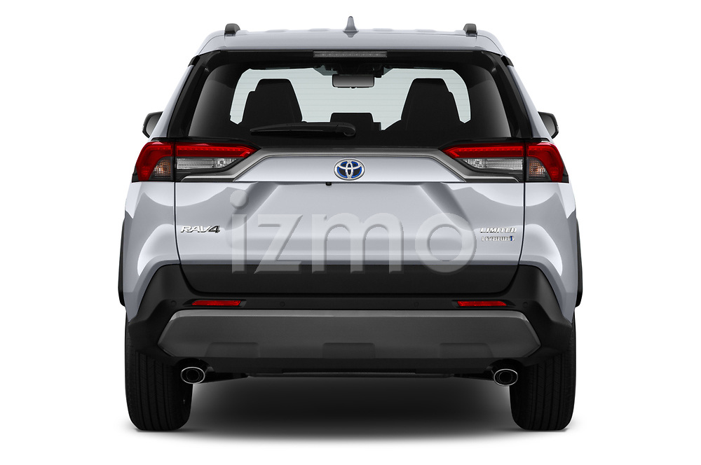 Straight rear view of a 2019 Toyota RAV4 Limited 5 Door SUV stock images
