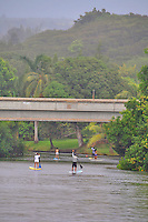 Paddleboarders don't mind a light misty rain as they work their way up the Anahulu river in Haleiwa, North Shore, O'ahu.