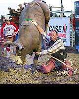 Rodeo'14 Pain Court/Chatham, Ontario