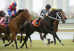 10 January 2010: Romacaca and Jockey  E.T. Baird lead the Marshua's River Stakes at Gulfstream Park in Hallandale Beach, FL.