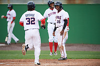 Potomac Nationals Victor Robles (16) waits congratulate Taylor Gushue (32) after hitting a home run during the first game of a doubleheader against the Salem Red Sox on May 13, 2017 at G. Richard Pfitzner Stadium in Woodbridge, Virginia.  Potomac defeated Salem 6-0.  (Mike Janes/Four Seam Images)