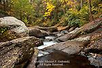 Wild Creek, Beltzville State Park, Pennsylvania