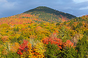 Autumn foliage along the Kancamagus Highway (route 112), which is one of New England's scenic byways in the White Mountains, New Hampshire USA.