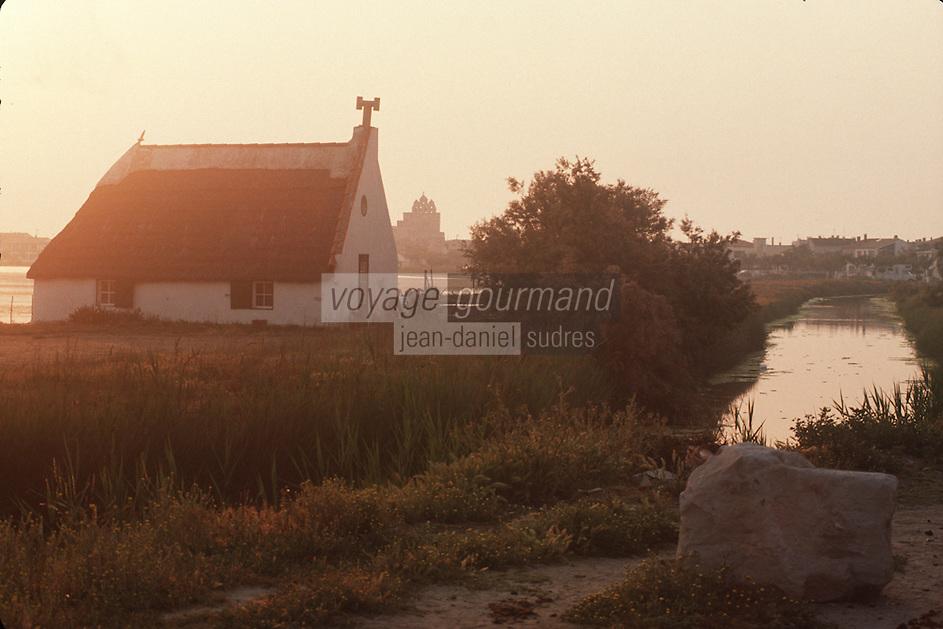France/13/Bouches du Rhone/Camargue/Parc Naturel Régional de Camargue/St Maries de La Mer: Cabane de Gardian et clocher du village à l'aube