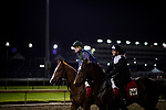 October 31, 2018 : Exercise Riders dressed in costume during morning works for Breeders Cup at Churchill Downs on October 31, 2018 in Louisville, Kentucky. Evers/ESW/Breeders Cup