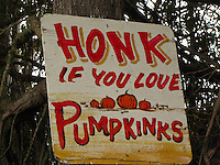 """Perhaps to get attention, or maybe just a little joke, a sign urges you to honk if you love """"pumpkinks""""."""