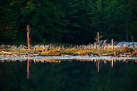 Morning Reflection, Northern Lake, Killarney Provincial Park, Ontario, Canada