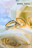 Helga, WEDDING, photos, DTTH6601,#w# Hochzeit, boda