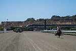 JUL 23,2014:Horse on the all weather track and train,Amtrack at Del Mar in Del Mar,CA. Kazushi Ishida/ESW/CSM