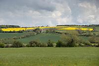 18-5-2021 Farming landscape in Rutland<br /> ©Tim Scrivener Photographer 07850 303986<br />      ....Covering Agriculture In The UK....